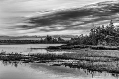 Whitesbog0405-Edit