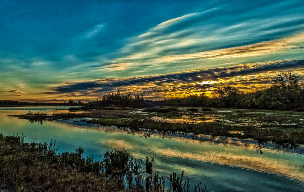 Whites Bog Landscape Sunset Photo