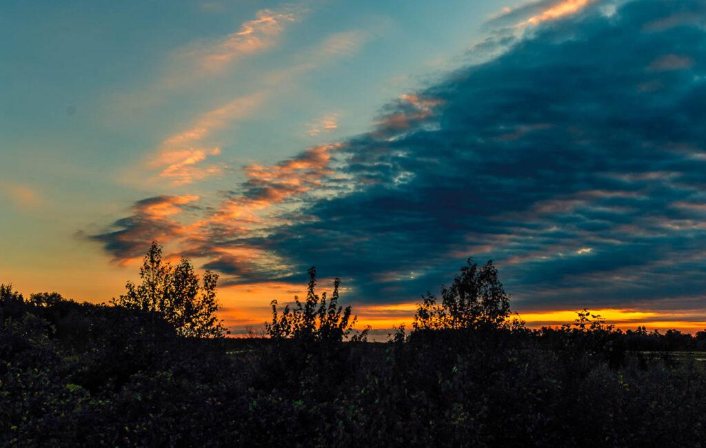 Whitesbog Sunrise