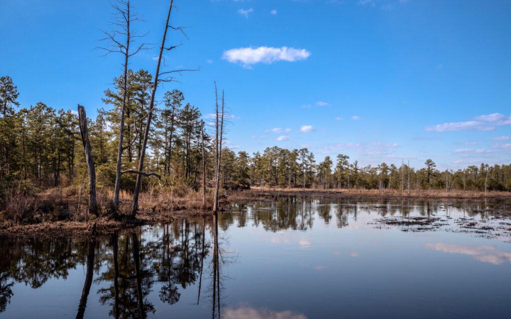 Prin for sale of Beaver Pond NJ