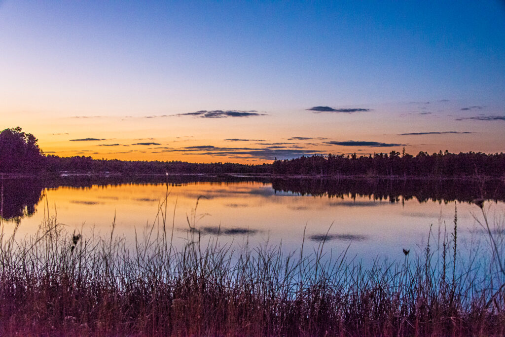 Peaceful lake Chadworth at Sunset in the Pines