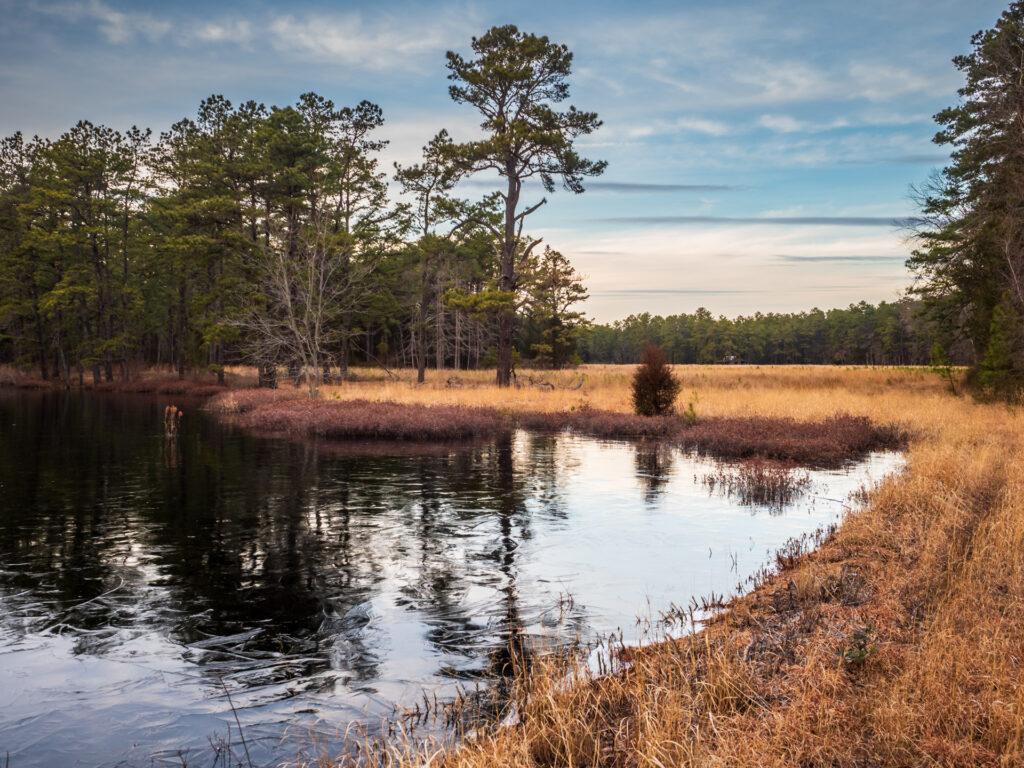Beautiful peacefull landscape
