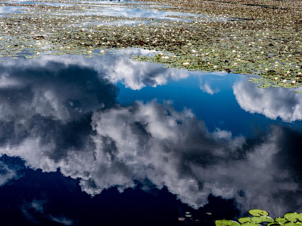 Sonny place lake
