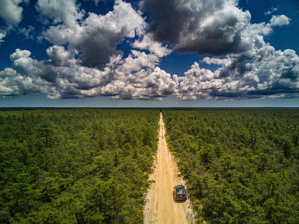 Pygmy Pines Plains Photo
